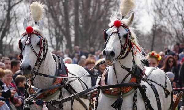 Тодоровден – история, обичаи и традиции